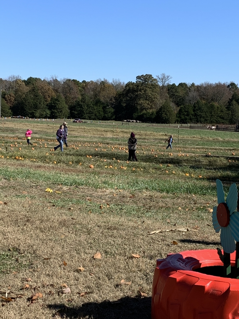 Great day at the pumpkin patch with Mtn. View Kindergarten!