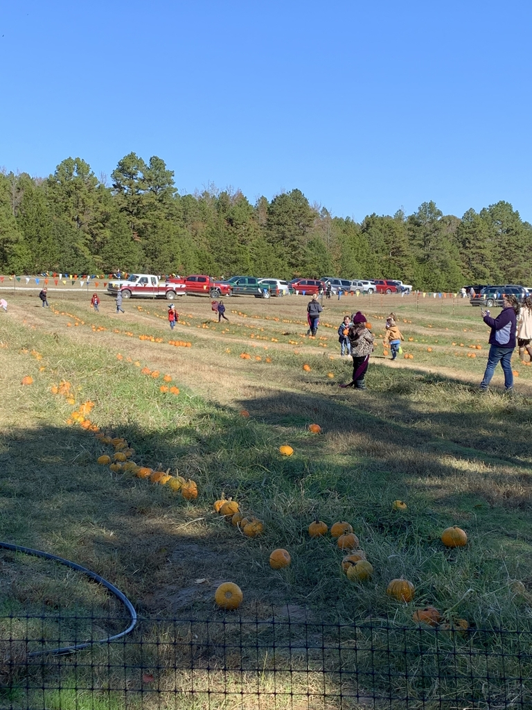 More fun at the pumpkin patch!